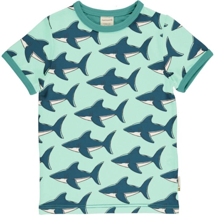 TOP SS Shark kids