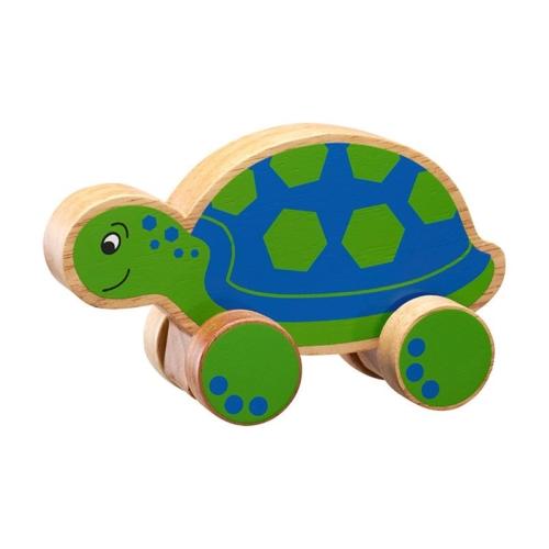 schildpad-op-wielen