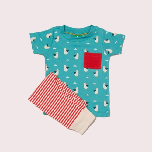 summer-seagull-t-shirt-jogger-playset